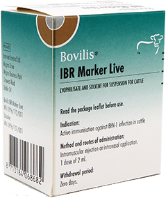 IBR Product Image