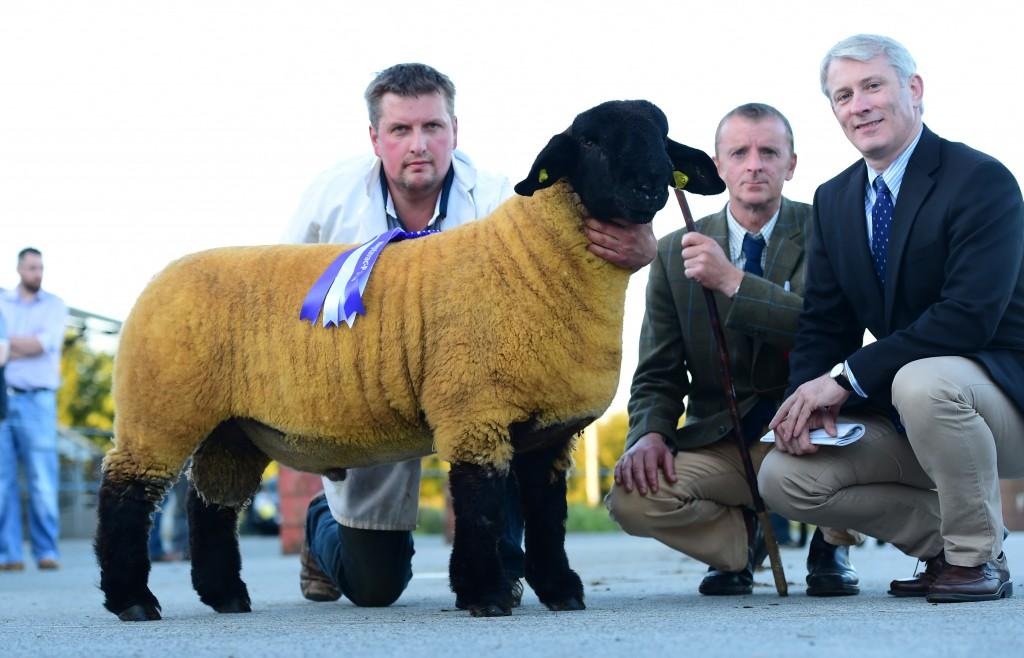 Winners of the ram lamb sire, J&R Wilson