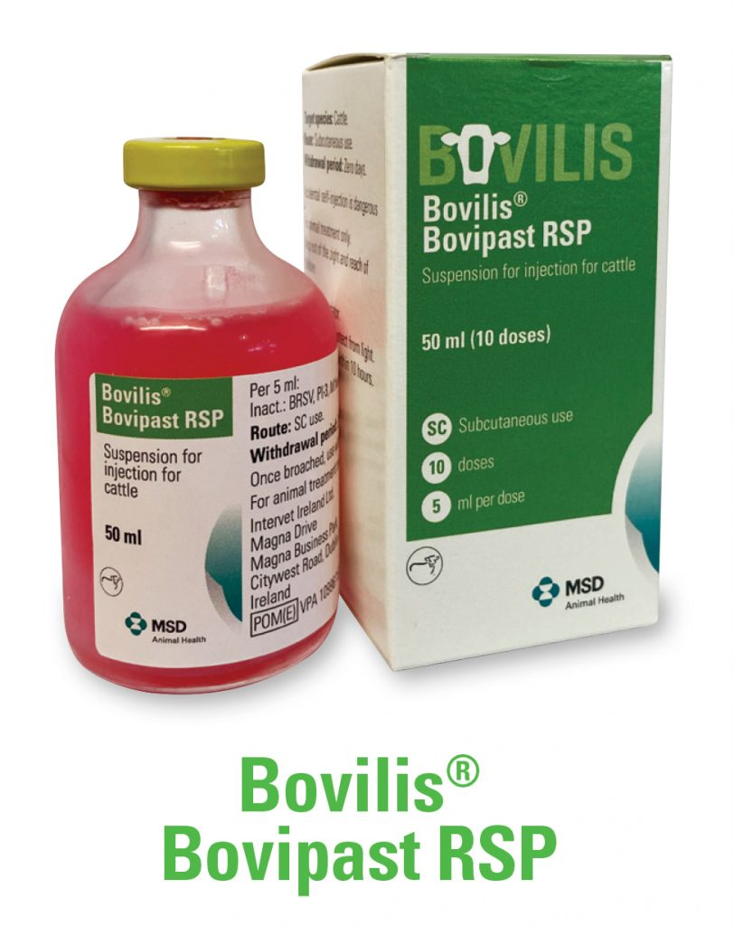 Bovilis Bovipast RSP