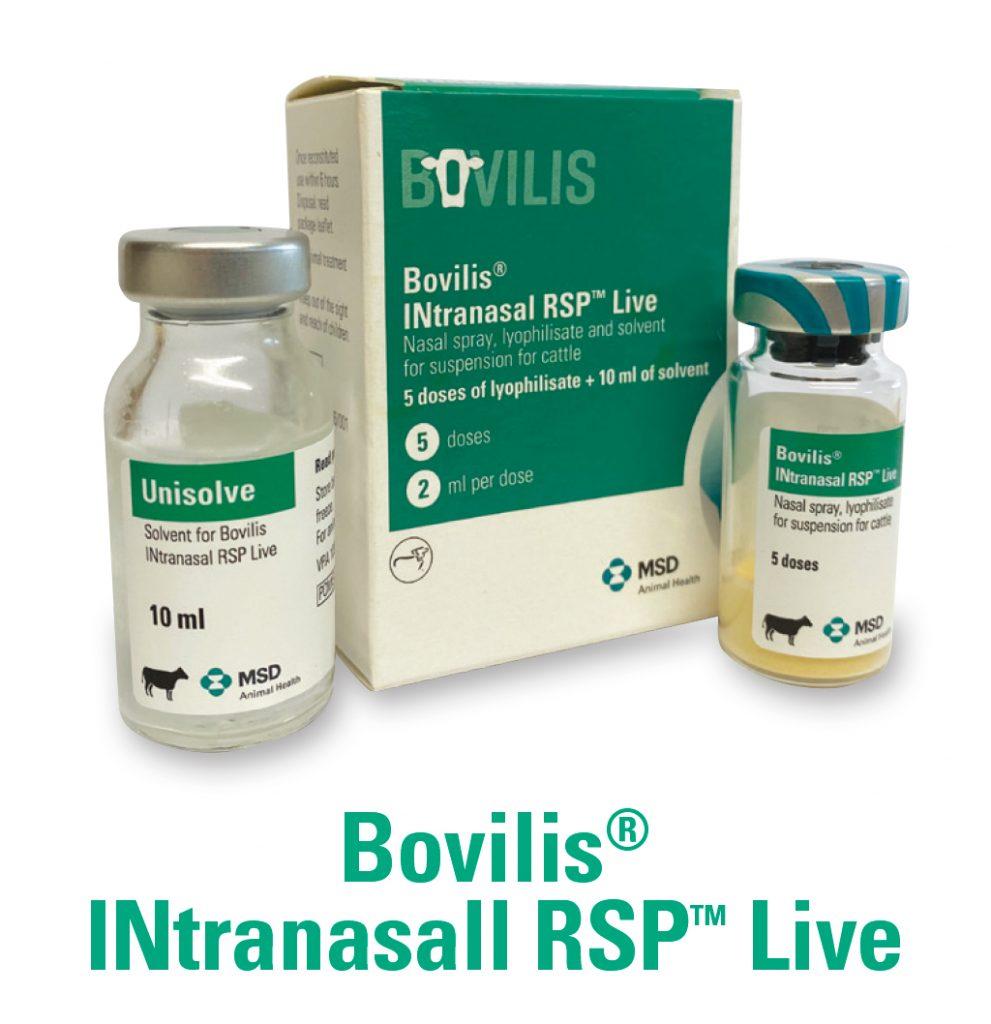 Bovilis INtranasal RSP Live